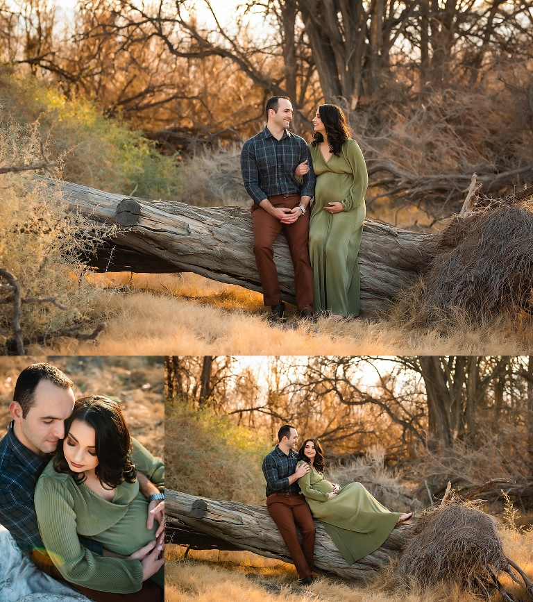 Winter Maternity Portraits
